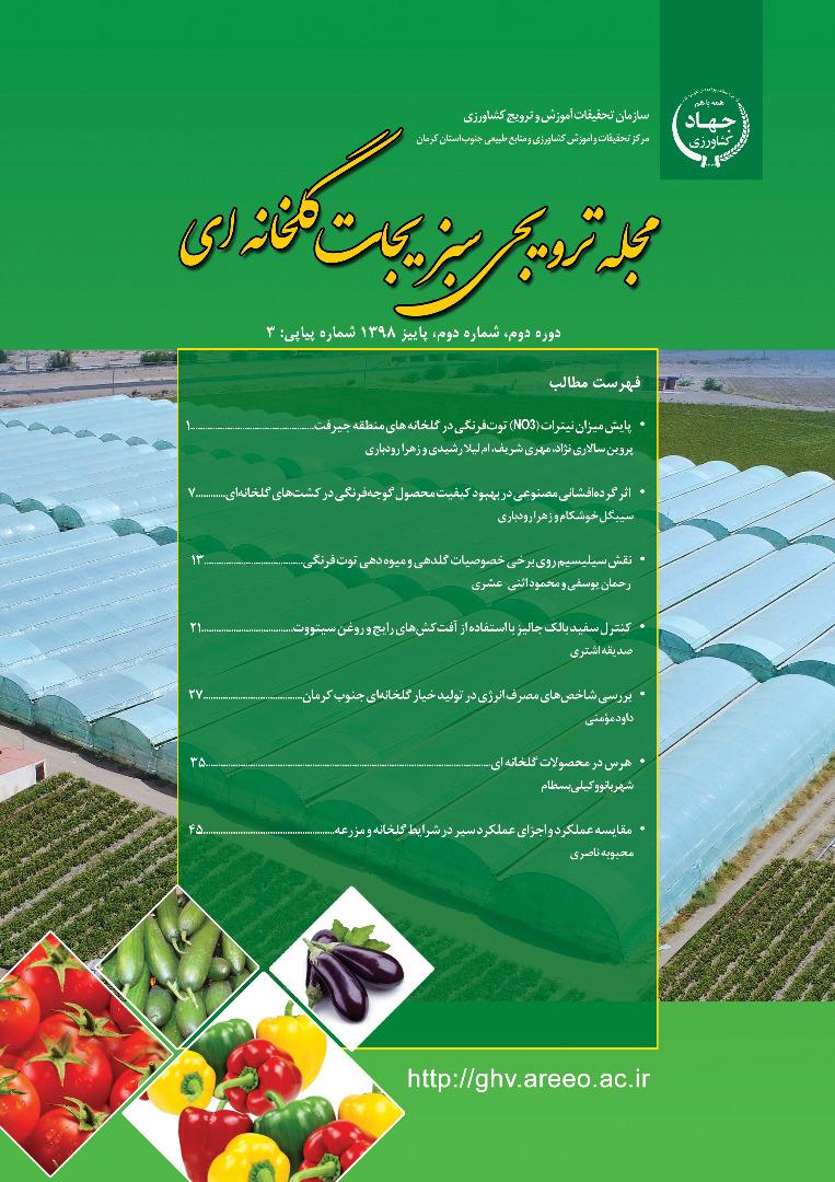 سبزیجات گلخانه ای